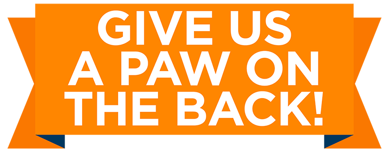 give-us-a-paw-on-the-back